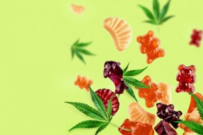 Avoid Getting Too High From Cannabis Edibles