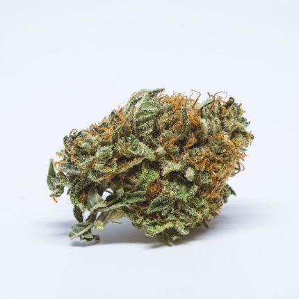 Beautiful image of BC big bud (AAA)